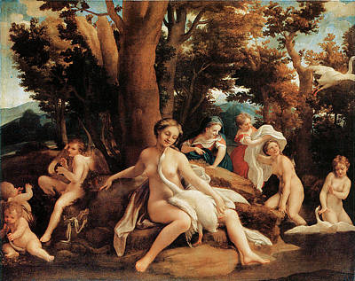 Leda With The Swan  Poster by Correggio