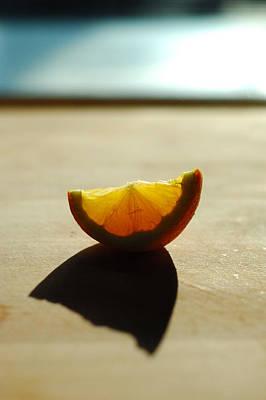 Lemon Shell Poster