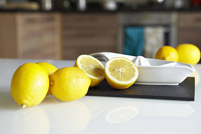 Lemons And Juicer On Kitchen Counter Poster by Debby Lewis-Harrison
