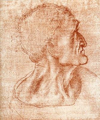 Leonardo Da Vinci Artwork Poster by Sheila Terry