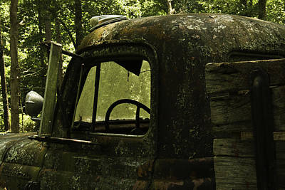 Lichen Covered Truck 9 Poster by Douglas Barnett