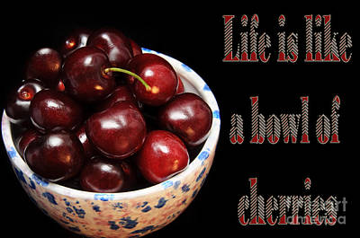 Life Is Like A Bowl Of Cherries 2  Poster by Andee Design