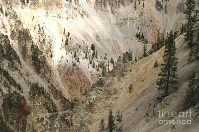Light And Shadows In The Grand Canyon In Yellowstone Poster by Living Color Photography Lorraine Lynch