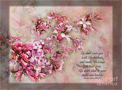 Lilacs With Verse Poster