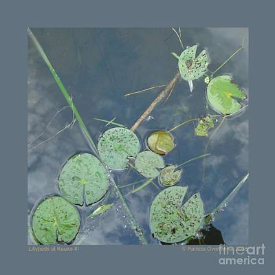 Poster featuring the photograph Lillypads At Keuka-iii by Patricia Overmoyer