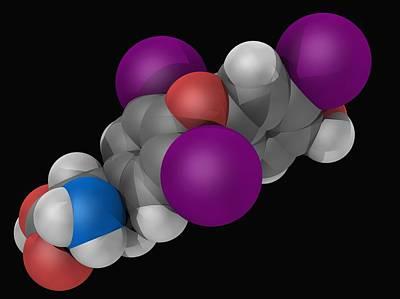 Liothyronine Hormone Molecule Poster by Laguna Design