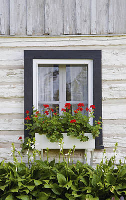 Log Home And Flower Box In The Window Poster by David Chapman