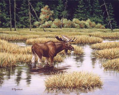 Lone Bull Poster by Richard De Wolfe