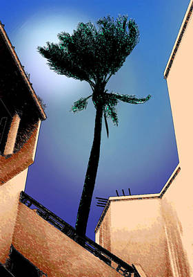 Lone Palm Poster by Ginny Schmidt