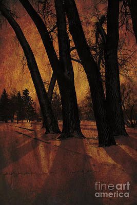 Long Shadows Poster by Alyce Taylor