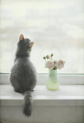 Longing For Spring Poster by Have A Good Day!