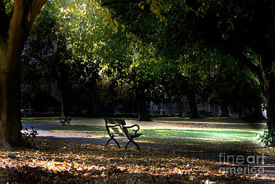Lonley Park Bench Poster by Brian Roscorla