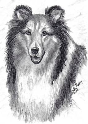 Poster featuring the drawing Looks Like Lassie by Julie Brugh Riffey