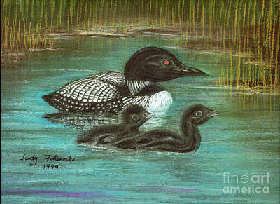 Loon Babies With Mother Judy Filarecki Pastel Painting Poster by Judy Filarecki