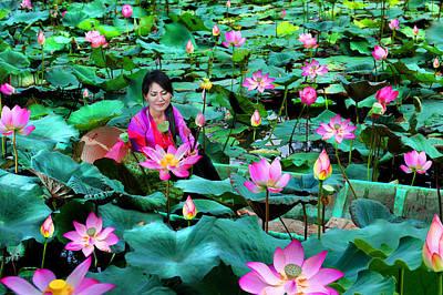Lotus Season Poster