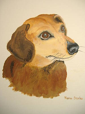 Poster featuring the painting Lovable Dachshund by Norm Starks