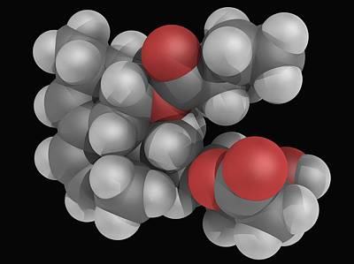 Lovastatin Drug Molecule Poster by Laguna Design