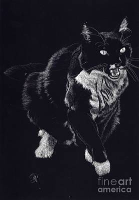 Lucy The Cat Poster