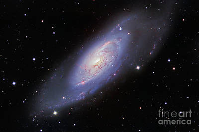 M106 Spiral Galaxy Poster by Ken Crawford