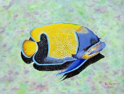 Majestic Angelfish Poster by Riley Geddings