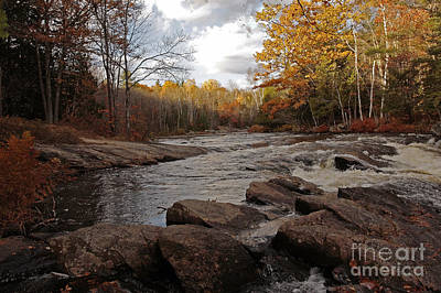Majestic Autumn Moments At Algonquin Proncial Park Poster by Inspired Nature Photography Fine Art Photography