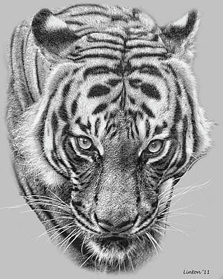 Malayan Tiger Poster by Larry Linton