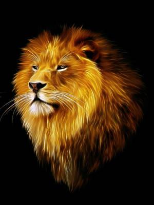 Male Lion Fractal Poster by Julie L Hoddinott