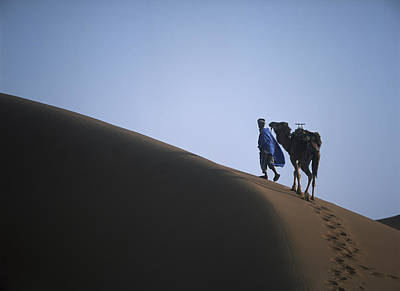 Man And Camel On Sand Dune Poster