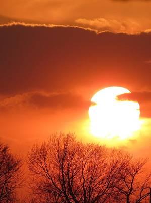 Mango Sunset Kansas Tree Silhouette Poster