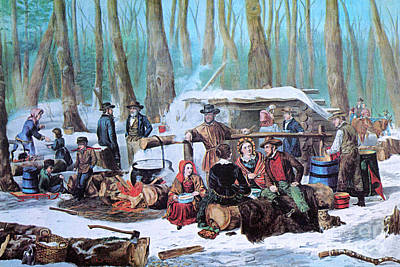 Maple Sugaring, 1872 Poster by Photo Researchers
