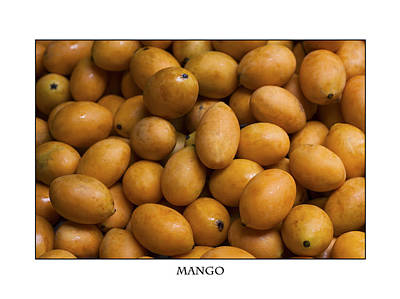 Market Mangoes Against White Background Poster by Zoe Ferrie