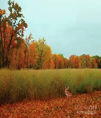 Meadow Poster by David Klaboe