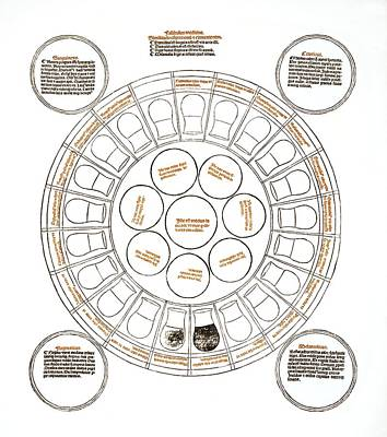 Medieval Urine Wheel And The Four Humours Poster
