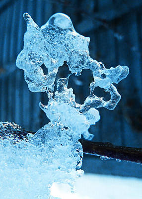 Poster featuring the photograph Meet The Ice Sculpture by Steve Taylor