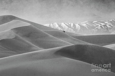 Death Valley California Mesquite Dunes 12 Poster by Bob Christopher