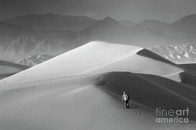 Death Valley California Mesquite Dunes 6 Poster by Bob Christopher