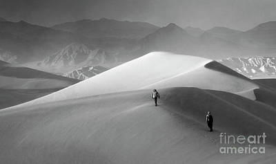 Death Valley California Mesquite Dunes 8 Poster by Bob Christopher