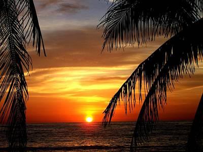 Mexican Sunset Sayulita Nayarit Poster by David Galleher