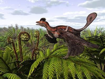 Microraptor Dinosaur, Artwork Poster