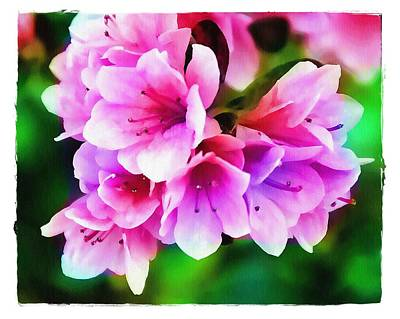 Poster featuring the photograph Miniature Azaleas by Judi Bagwell
