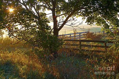 Misty Farm Sunrise Poster by Gordon Wood