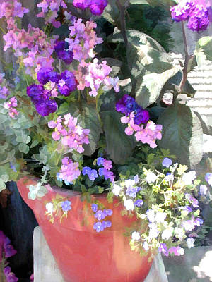 Mixed Purple Flowers In A Terra Cotta Planter Poster