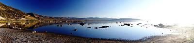 Mono Lake Dawn Poster