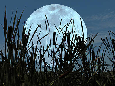 Moon And Marsh Poster by Deborah Smith