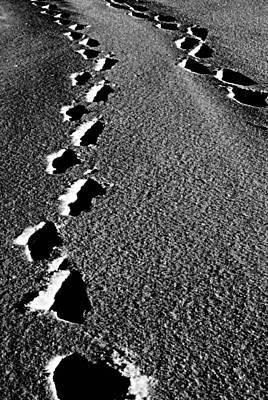 Moon Walk Poster by Jerry Cordeiro