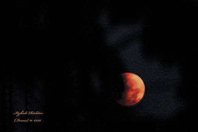 Poster featuring the photograph Moonlight Sonate by Itzhak Richter