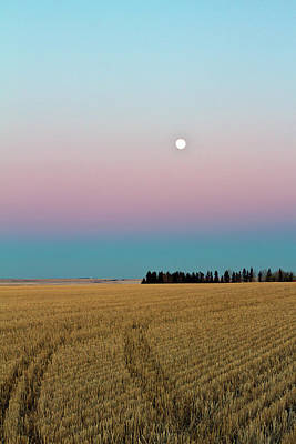 Moonrise Poster by Images by Christine De Bruyn Photography