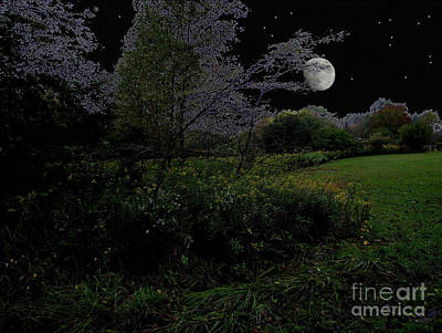 Moonrise In Flossmoor Forest Poster by Cedric Hampton