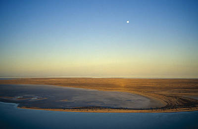 Moonrise Over Lake Eyre In Flood Poster