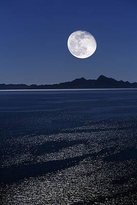 Moonrise Over Sea Poster by David Nunuk